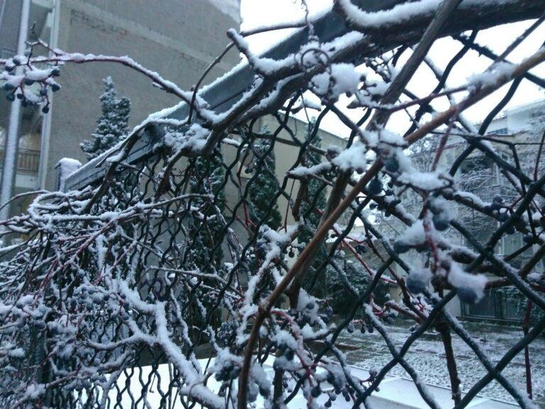 Μήδεια: Κλειστά τη Δευτέρα όλα τα σχολεία στην Κεντρική Μακεδονία